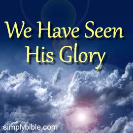 ip-we-have-seen-his-glory